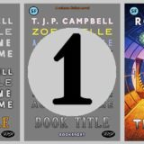 1 book cover aim 01